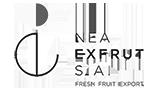 EXFRUT LOGO NEW