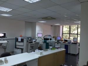 IMG 6449